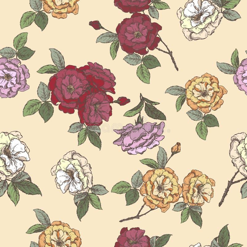 Modello senza cuciture basato sullo schizzo rosa del damasco di colore illustrazione di stock