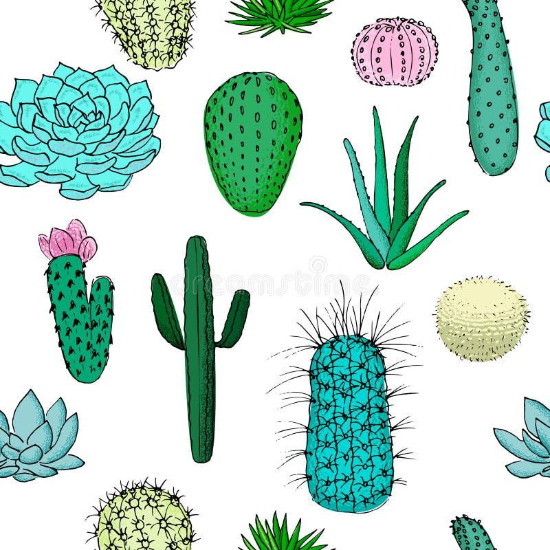 Modello senza cuciture colorato dei cactus, illustrazione disegnata a mano di vettore Raccolta succulente n illustrazione di stock