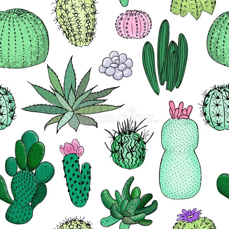 Modello senza cuciture colorato dei cactus, illustrazione disegnata a mano di vettore Raccolta succulente n illustrazione vettoriale