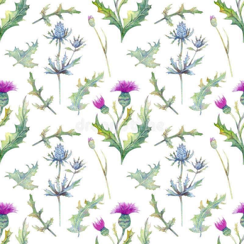 Modello senza cuciture con i fiori e le foglie della molla Wildflowers su fondo bianco isolato modello floreale per la carta da p illustrazione vettoriale