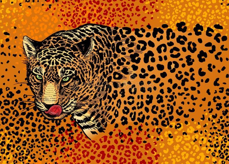 Modello senza cuciture con i leopardi illustrazione vettoriale