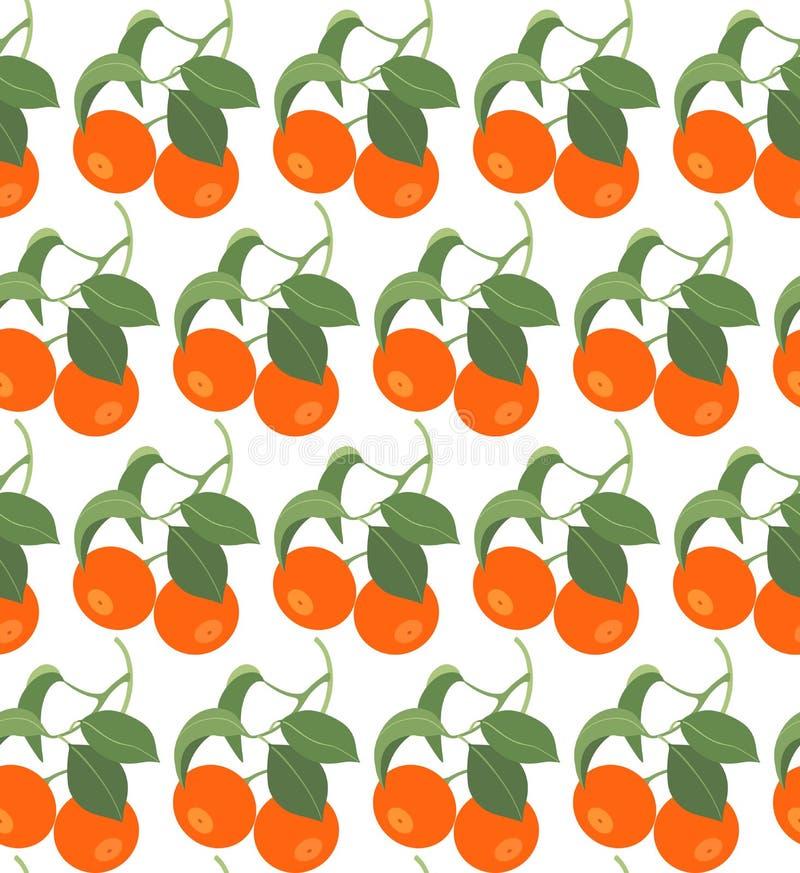 Modello senza cuciture con i mandarini su fondo bianco royalty illustrazione gratis