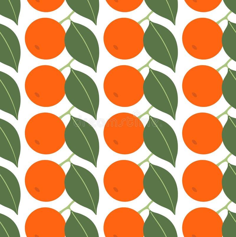 Modello senza cuciture con i mandarini su fondo bianco illustrazione vettoriale