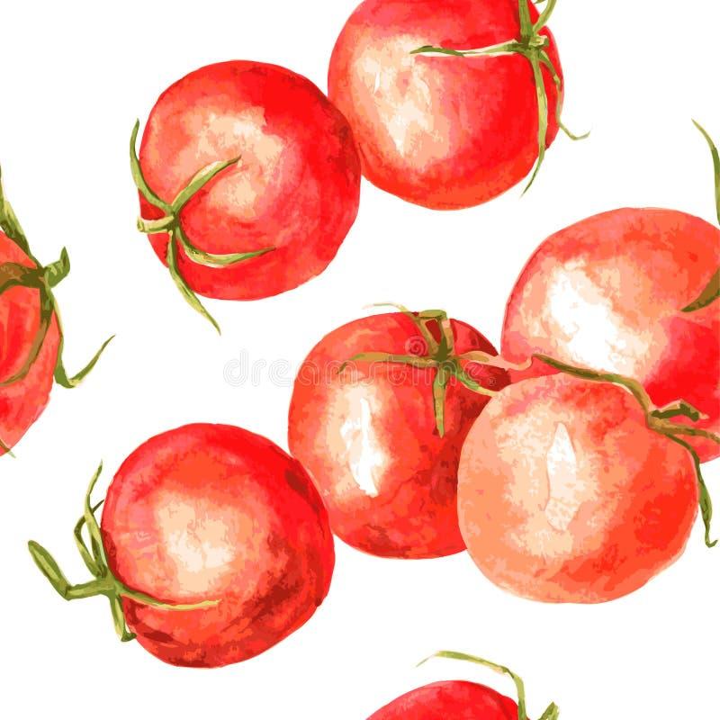 Modello senza cuciture con i pomodori del disegno dell'acquerello illustrazione di stock