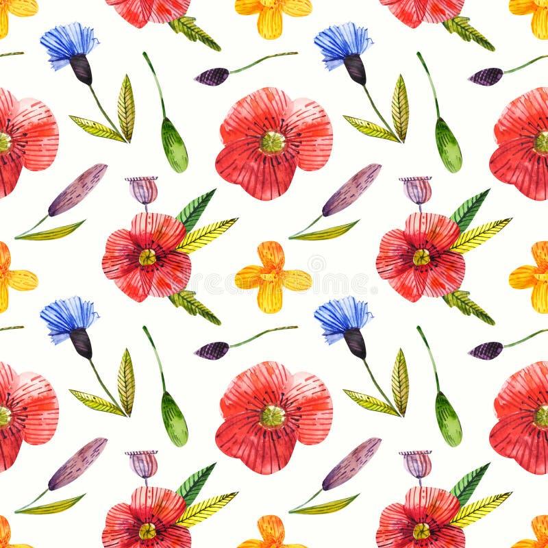Modello senza cuciture con il papavero, centaurea, campanula Illustrazione del Wildflower Fondo di disegno della mano naturale Gr royalty illustrazione gratis