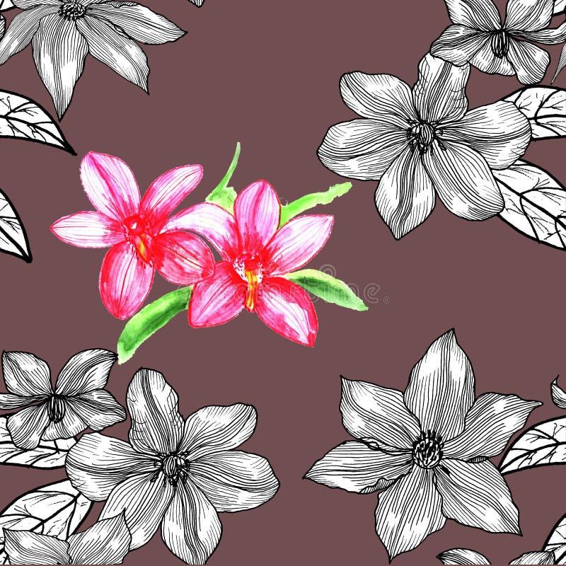 Modello senza cuciture con la clematide Disegnato a mano grafici illustrazione di stock