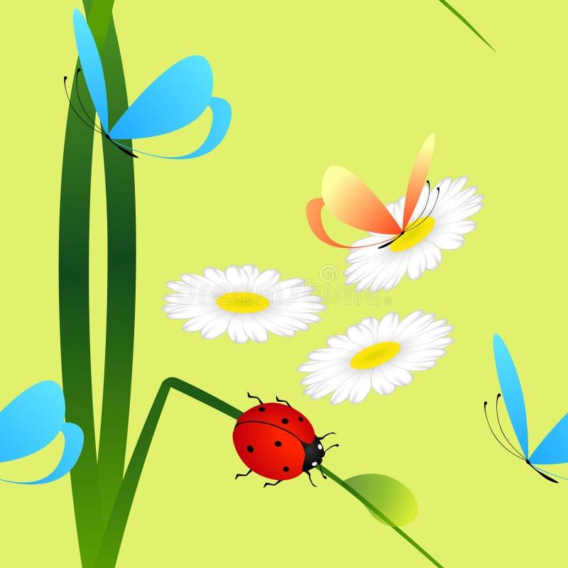 Modello senza cuciture con la coccinella su erba, sulle farfalle e sulle margherite su un fondo verde illustrazione vettoriale
