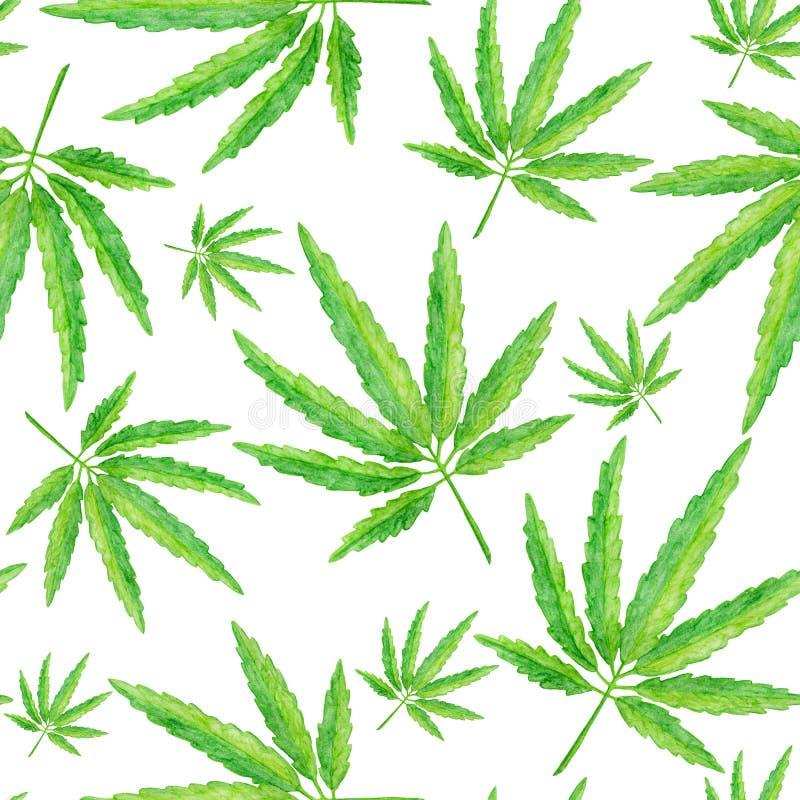 Modello senza cuciture con la foglia verde della cannabis, pianta isolata su fondo bianco illustrazione vettoriale