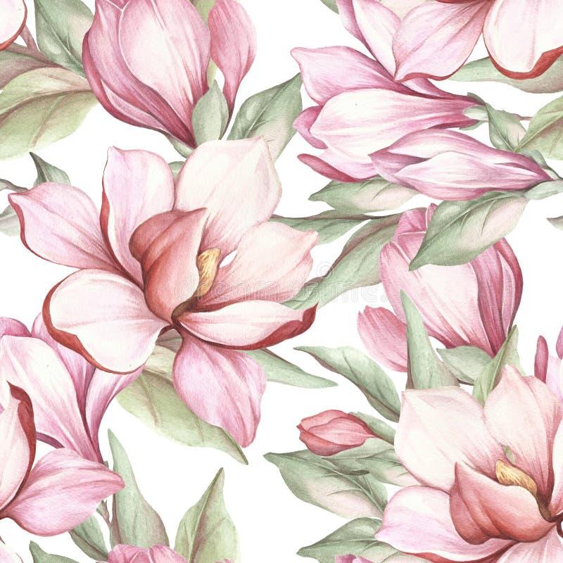 Modello senza cuciture con la magnolia di fioritura Illustrazione dell'acquerello illustrazione di stock