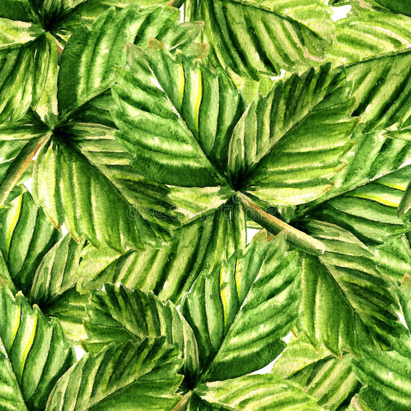 Modello senza cuciture con le foglie della fragola royalty illustrazione gratis