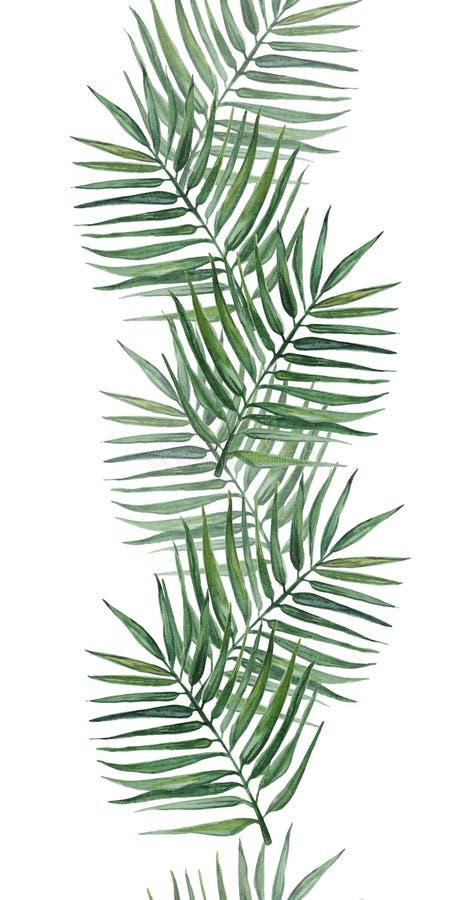 Modello senza cuciture con le foglie di palma Illustrazione dell'acquerello illustrazione vettoriale