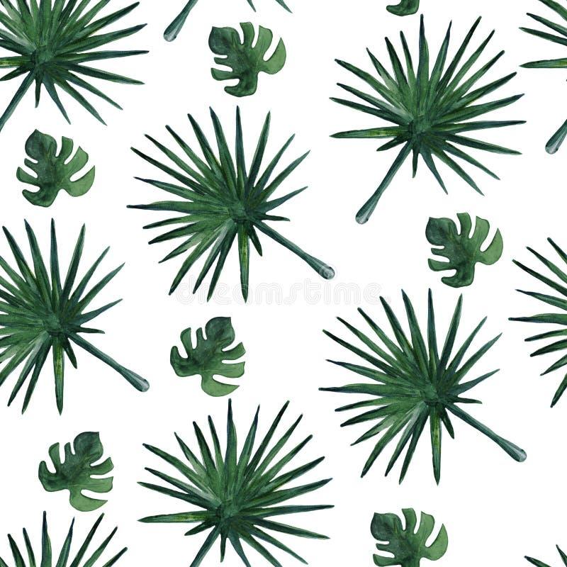 Modello senza cuciture con le foglie di palma Illustrazione dell'acquerello royalty illustrazione gratis