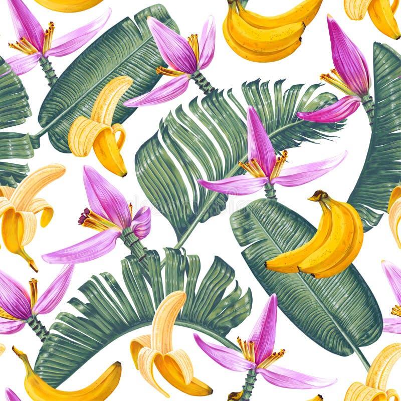 Modello senza cuciture con le foglie, i frutti ed i fiori della banana nello stile realistico con gli alti dettagli illustrazione di stock