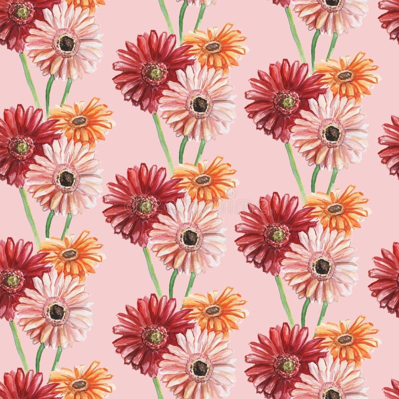Modello senza cuciture con le gerbere rosse ed arancio di rosa, su un fondo rosa Illustrazione dell'acquerello fotografie stock libere da diritti