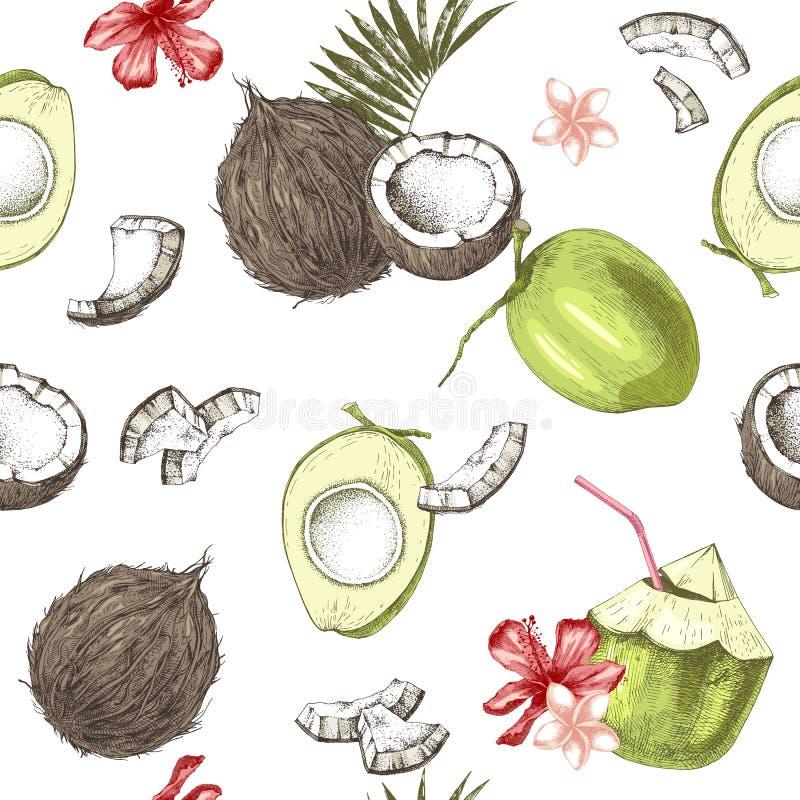 Modello senza cuciture con le noci di cocco disegnate a mano verdi e mature ed i fiori tropicali illustrazione di stock