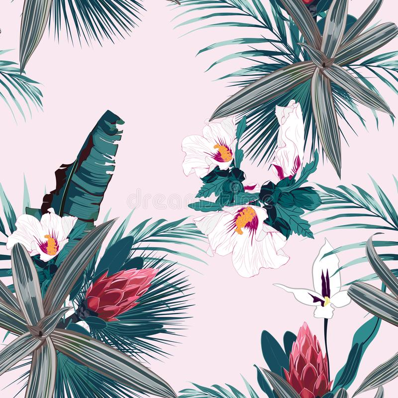 Modello senza cuciture con le piante tropicali, le palme ed i fiori esotici L'annata colora le piante tropicali sui precedenti ro illustrazione di stock