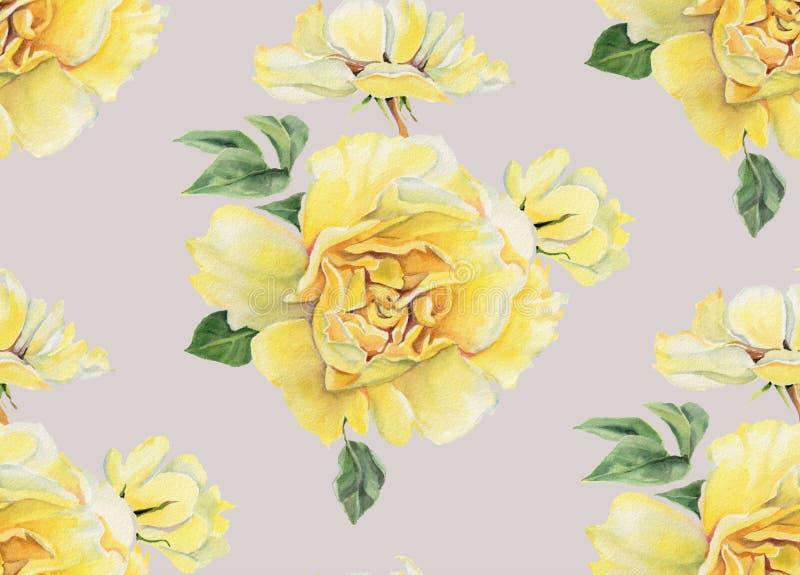Modello senza cuciture con le rose gialle dell'acquerello su fondo grigio illustrazione di stock