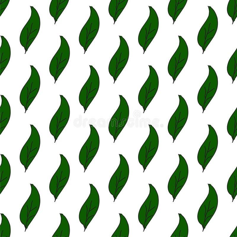 Modello senza cuciture d'annata delle foglie Foglie verdi disegnate a mano su bianco Priorità bassa astratta di vettore Stile sem illustrazione vettoriale