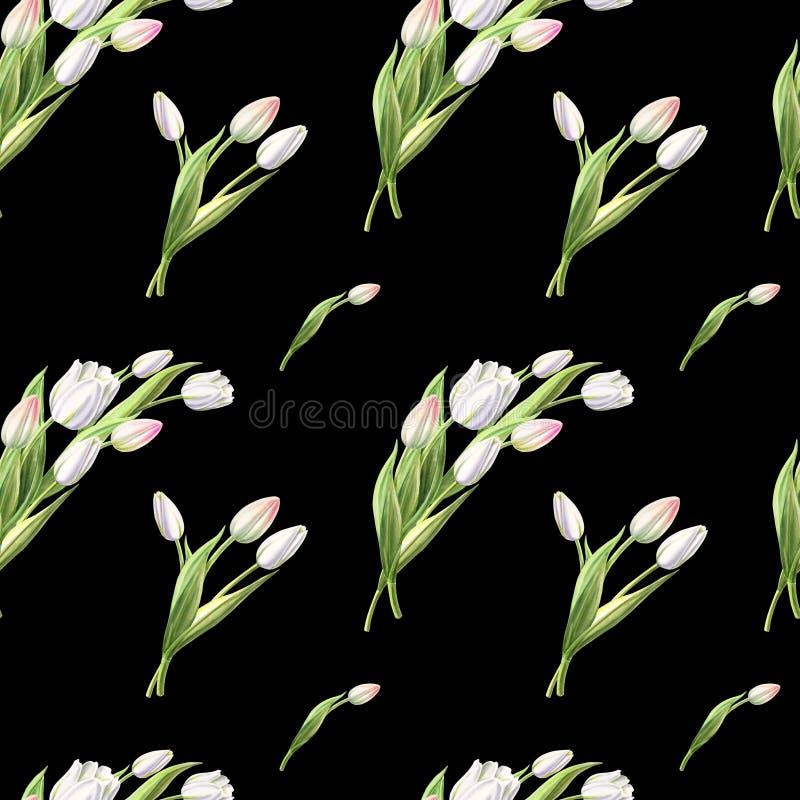 Modello senza cuciture dai bei tulipani bianchi sul contesto nero Disegno dell'indicatore Pittura dell'acquerello illustrazione vettoriale