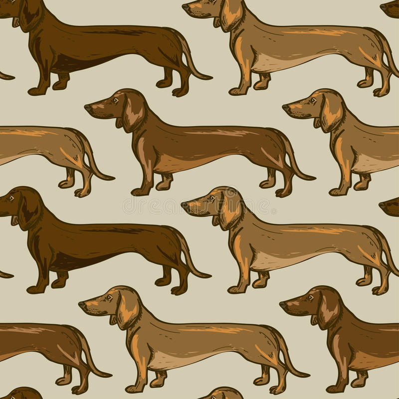 Modello senza cuciture dei cani del bassotto tedesco royalty illustrazione gratis