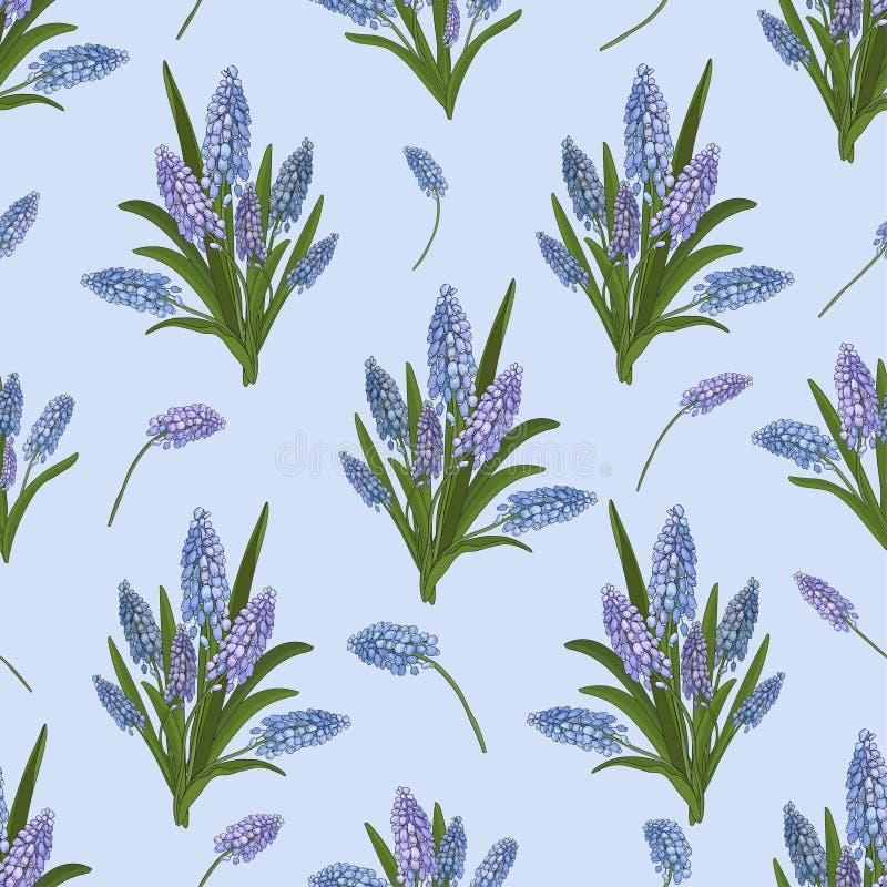 Modello senza cuciture dei mazzi del muscari blu dei fiori su un fondo blu Vettore illustrazione di stock