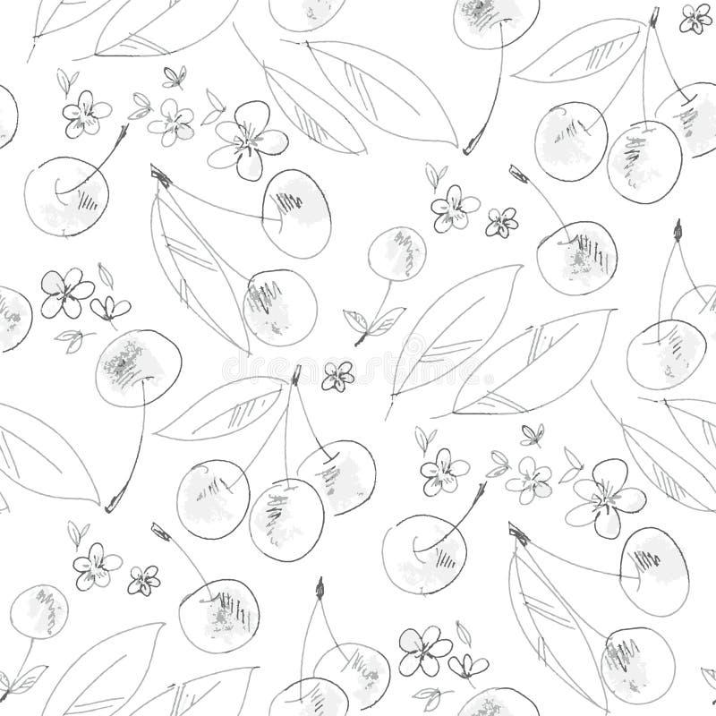 Modello senza cuciture del profilo disegnato a mano della fioritura della ciliegia illustrazione di stock