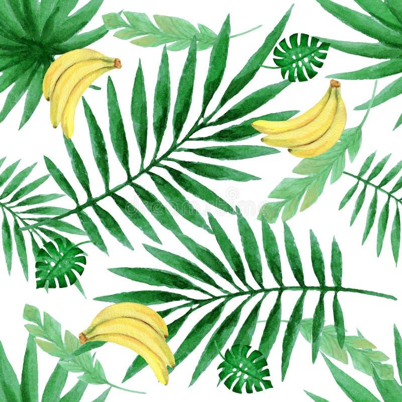 Modello senza cuciture dell'acquerello con le banane fresche e le foglie tropicali illustrazione di stock