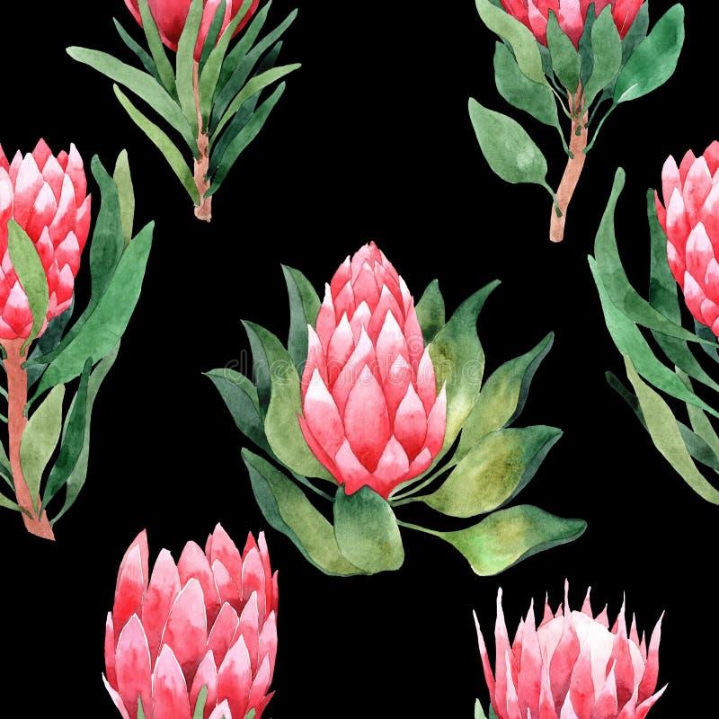 Modello senza cuciture dell'acquerello con le foglie ed i fiori tropicali greenery succulente Illustrazione di disegno floreale e royalty illustrazione gratis