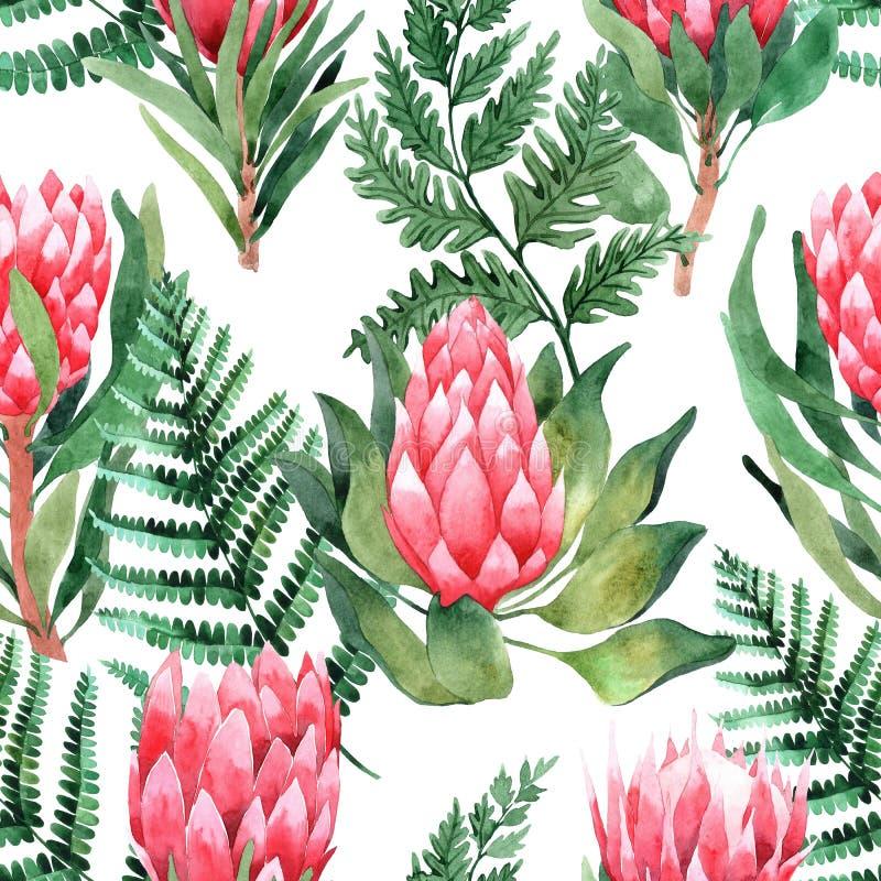 Modello senza cuciture dell'acquerello con le foglie ed i fiori tropicali greenery succulente Illustrazione di disegno floreale e illustrazione di stock