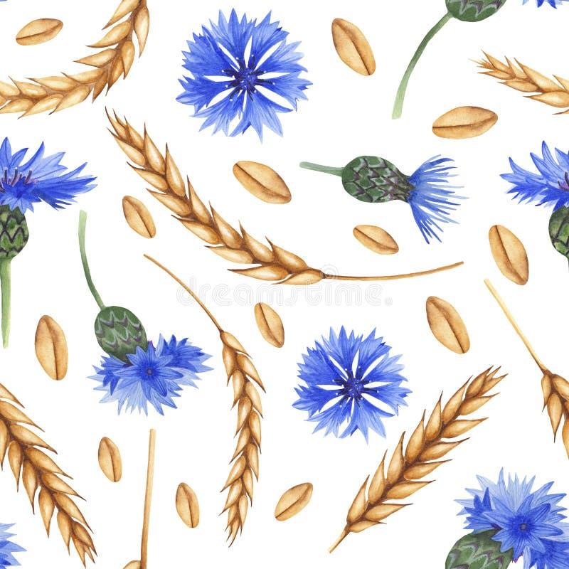 Modello senza cuciture dell'acquerello con le orecchie di grano e di fiordalisi illustrazione di stock