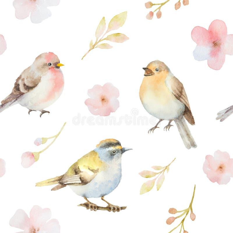 Modello senza cuciture dell'acquerello dei fiori della molla e degli uccelli illustrazione vettoriale
