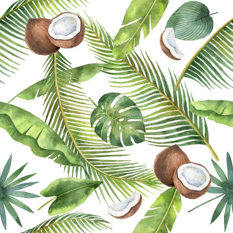 Modello senza cuciture dell'acquerello delle palme e della noce di cocco isolate su fondo bianco royalty illustrazione gratis