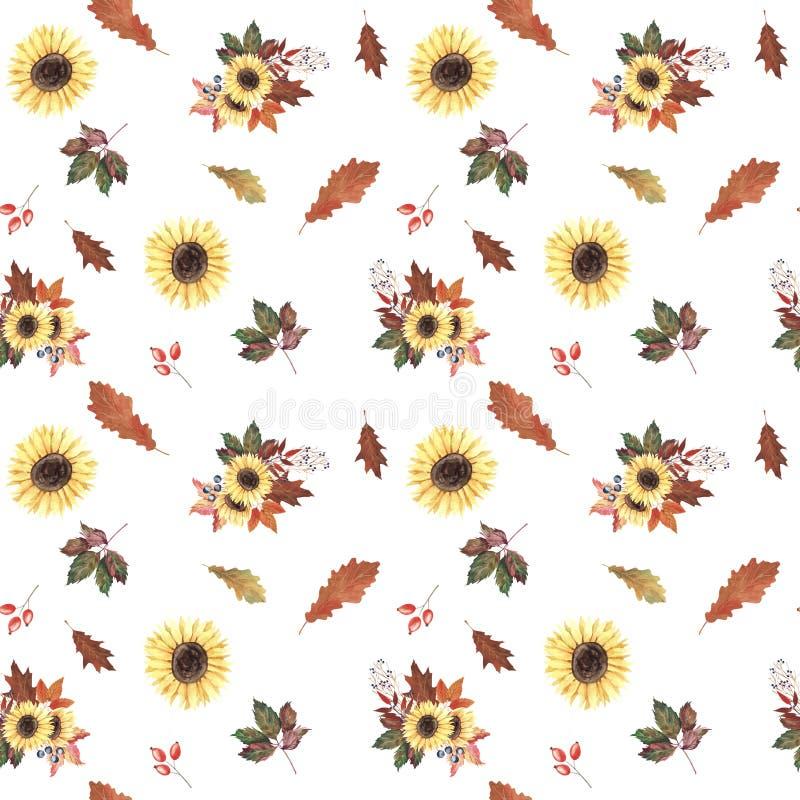 Modello senza cuciture dell'acquerello dipinto a mano con i girasoli, le foglie di autunno e le bacche su fondo bianco illustrazione di stock