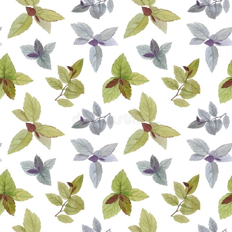 Modello senza cuciture dell'acquerello Un insieme delle foglie Foglie dipinte acquerello Elemento di disegno Foglie eleganti per  illustrazione di stock