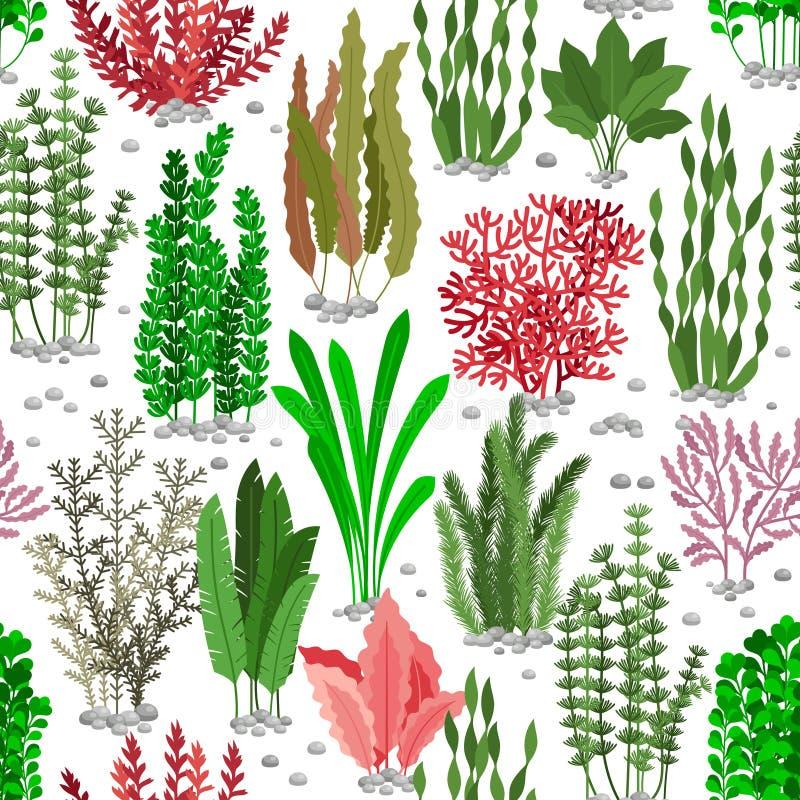 Modello senza cuciture dell'alga Fondo di vettore della pelliccia dell'erbaccia del mare per modo marino royalty illustrazione gratis