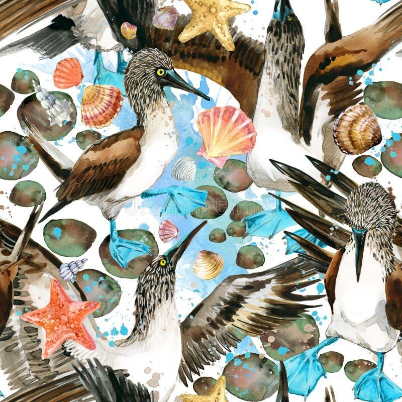Modello senza cuciture dell'uccello e di vanteria di mare fondo della spiaggia dell'acquerello royalty illustrazione gratis