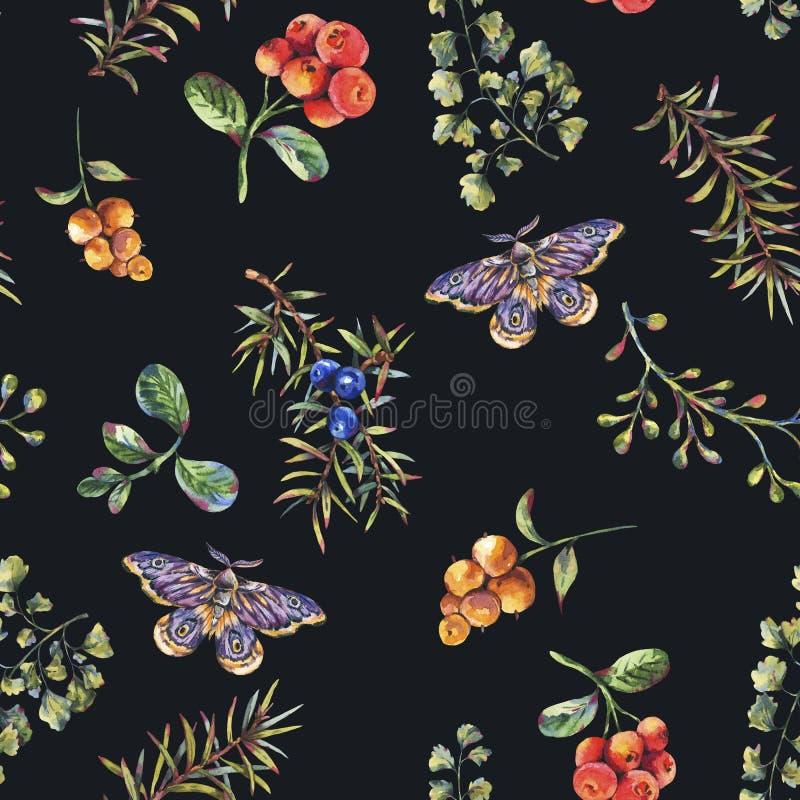 Modello senza cuciture della foresta floreale d'annata dell'acquerello con i rami, le bacche, il lepidottero, i fiori e la felce  royalty illustrazione gratis