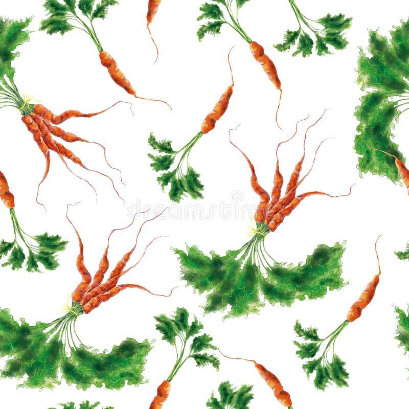 Modello senza cuciture delle carote disegnate a mano delle verdure dell'acquerello illustrazione vettoriale