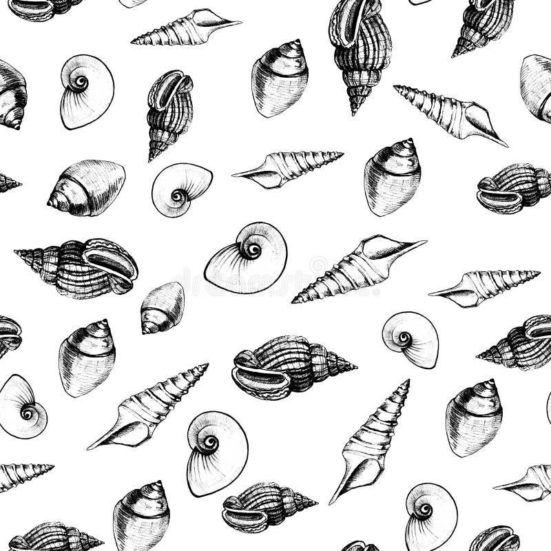 Modello senza cuciture delle conchiglie su fondo bianco Grafici manuali Progettazione per gli ambiti di provenienza, le carte da  immagini stock