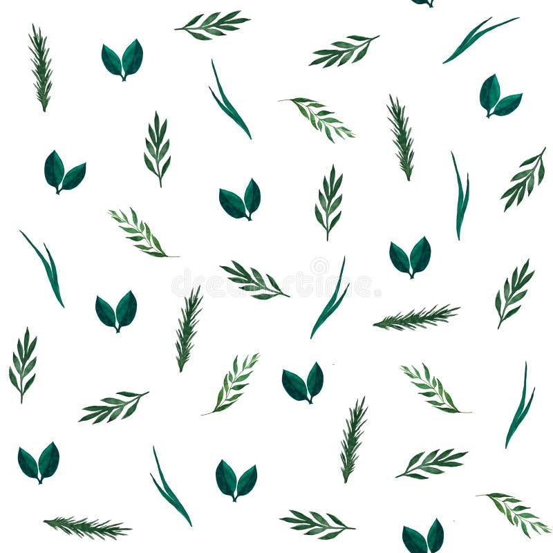 Modello senza cuciture delle foglie e del ramo dell'acquerello illustrazione di stock