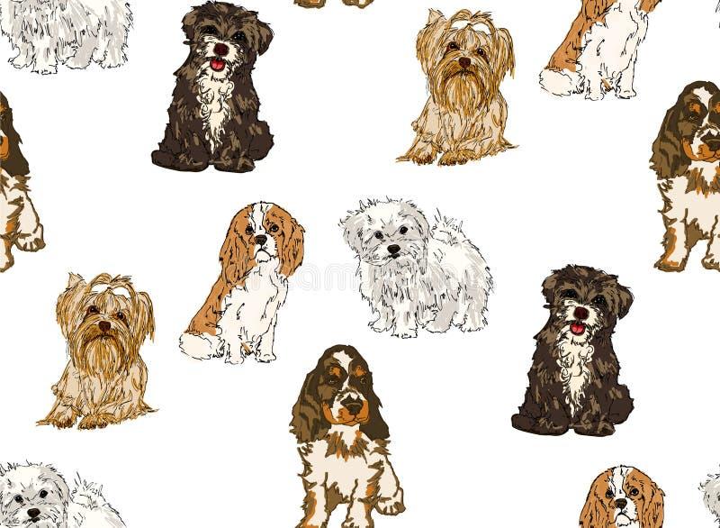 Modello senza cuciture delle razze differenti dei cani illustrazione di stock