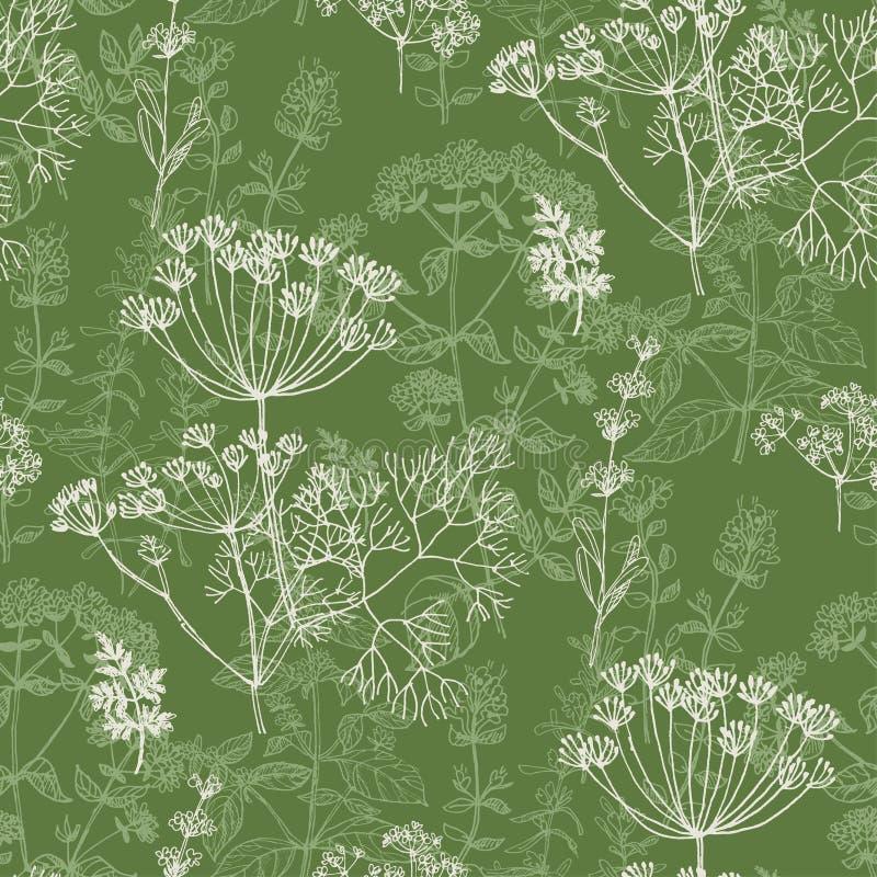 Modello senza cuciture di erbe classico elegante illustrazione di stock