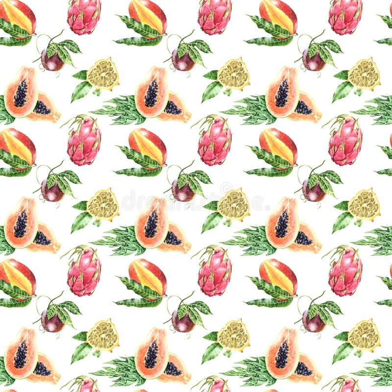 Modello senza cuciture di grande frutta tropicale illustrazione vettoriale