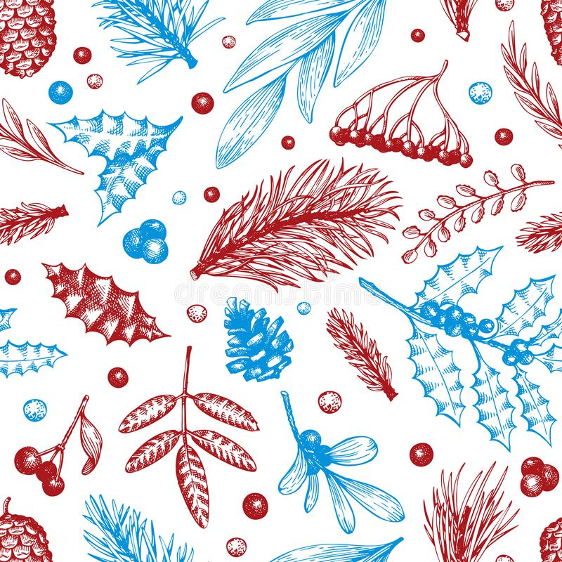 Modello senza cuciture di Natale di vettore Illustrazioni disegnate a mano di inverno L'insegna con conifero, pino si ramifica, b illustrazione di stock