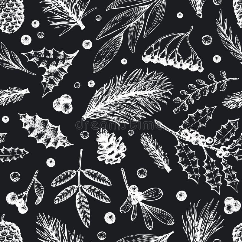 Modello senza cuciture di Natale di vettore Illustrazioni disegnate a mano di inverno sul bordo di gesso Insegna con conifero, ra illustrazione di stock