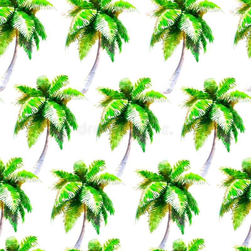 Modello senza cuciture di palmtree dell'acquerello, fondo disegnato a mano luminoso royalty illustrazione gratis