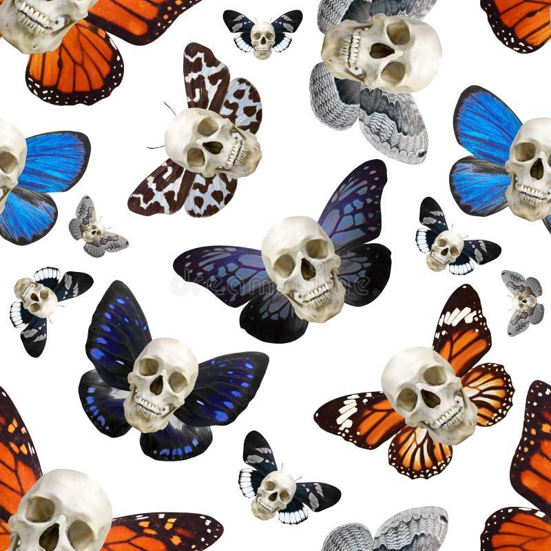 Modello senza cuciture di un cranio umano con le ali della farfalla Isolato su priorità bassa bianca illustrazione di stock