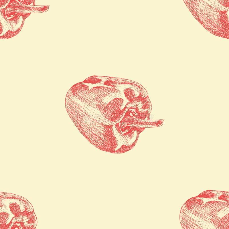 Modello senza cuciture di vettore con il pepe di colore Struttura disegnata a mano con paprica rossa Illustrazione di verdure illustrazione di stock