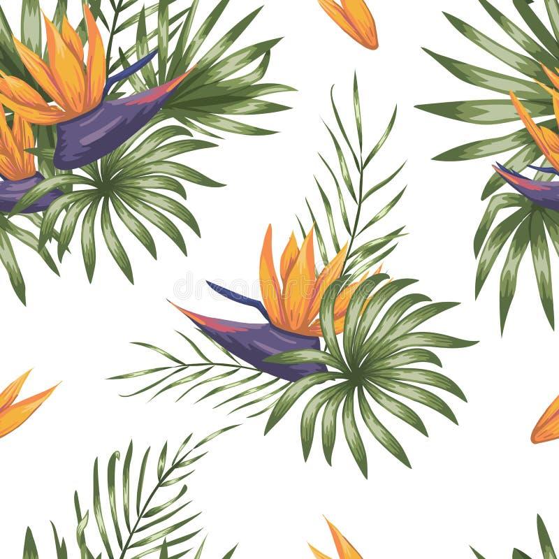 Modello senza cuciture di vettore delle foglie tropicali verdi con i fiori di strelizia illustrazione di stock