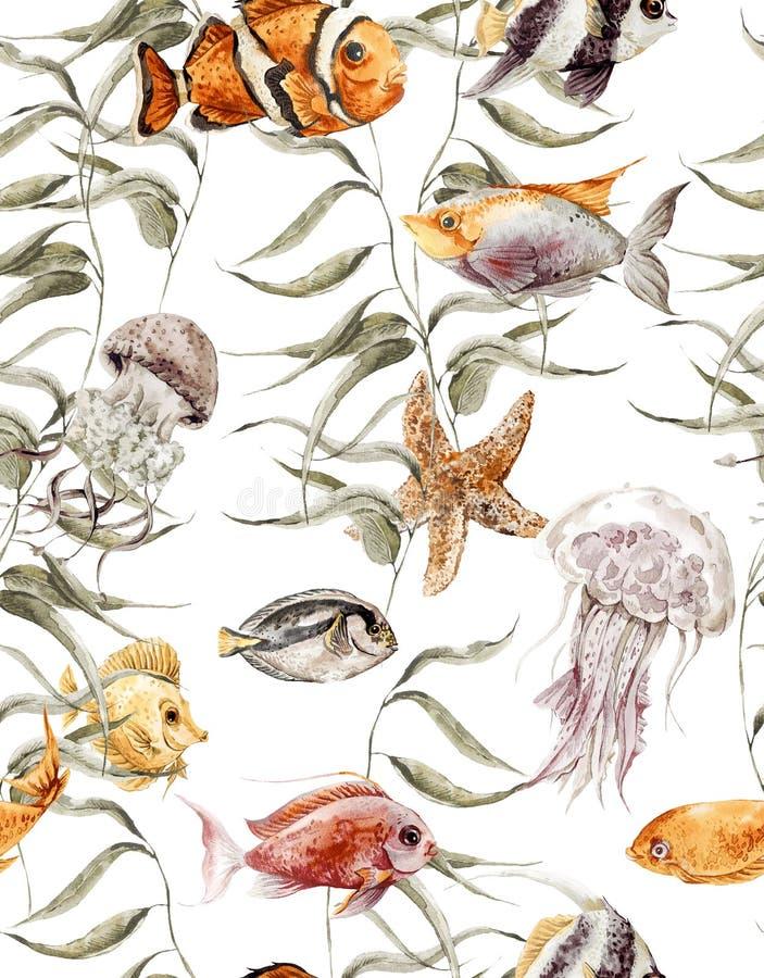 Download Modello Senza Cuciture Di Vita Di Mare Dell'acquerello, Subacqueo Illustrazione di Stock - Illustrazione di acquario, esotico: 56892170